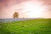 stock photo of heavens gate  - Dramatic sunset sky at country site - JPG