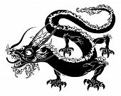 picture of dragon  - An illustration of a stylised Chinese oriental dragon perhaps a dragon tattoo - JPG