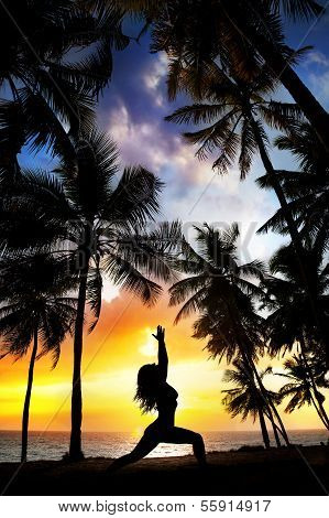 Yoga Silhouette Near Palm Trees