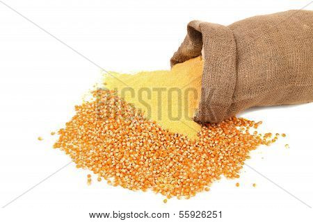 Corn meal and grain in bag