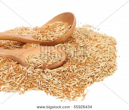Wooden spoon and assorted seed for exotic birds.