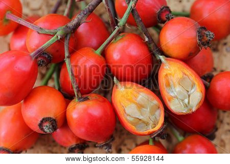Rose hip flowers cut in half on a wooden background