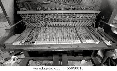 Broken Piano In Trashed Room