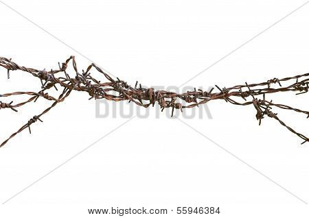 Barbed Wire Macro Closeup, Old Aged Detailed Weathered Grunge Isolated  Barbwire