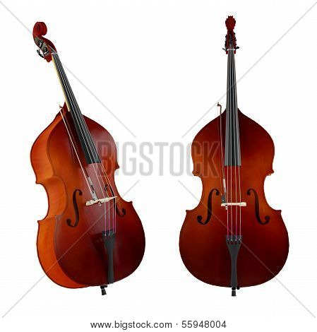 Contrabass,double bass.Classical music instrument