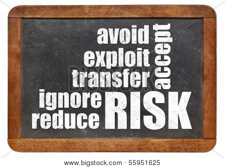 risk management strategies - ignore, accept, avoid, reduce, transfer and exploit - word cloud on a vintage slate blackboard