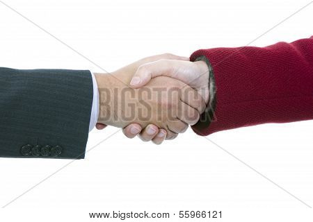 Handshake Of Business Partners, Men And Women