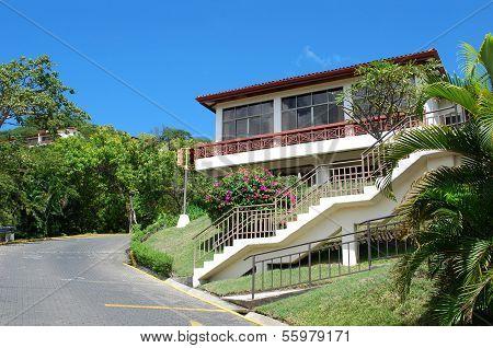 Tropical town street