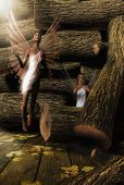 Fairies in the Woodpile poster