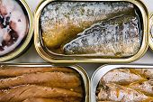 stock photo of hermetic  - Tin cans of aluminum of different size of sardines, mackerel in olive oil