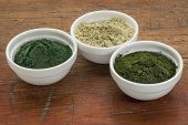 kelp, chlorella and Hawaiian spirulina powders - nutritional supplements from a sea - ceramic bowls