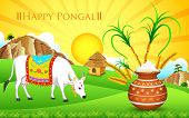 foto of kalash  - illustration of Happy Pongal greeting background - JPG