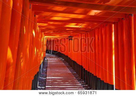 Fushimi Inari Taisha Shrine in Kyoto city