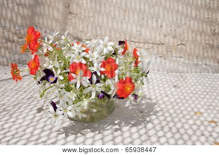 Still Life Bouquet With Net Shadow