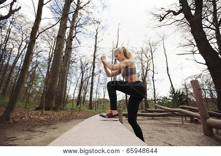 Female Athlete Working Out In Nature