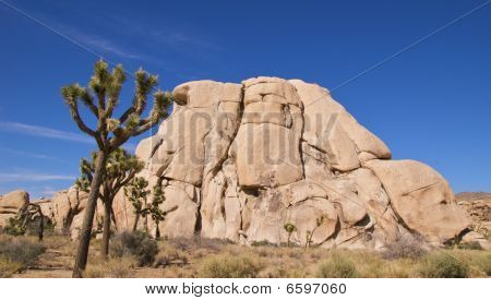 Rock climbers in Hidden Valley, Joshua Tree NP