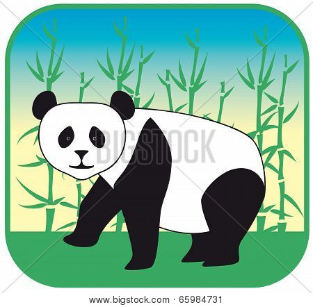 panda vector hand drawn