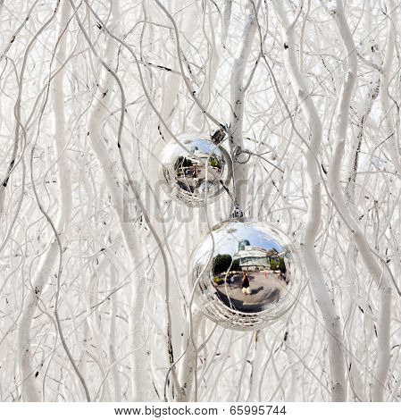 Family Is Mirroring In Christmas Tree Balls