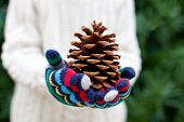 stock photo of cone  - close-up of tree cone child holding it in his hands christmas tree at the background
