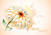 image of day-lilies  - Vector greeting horizontal grunge background with beautiful watercolor lily flower - JPG