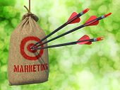 picture of market segmentation  - Marketing  - JPG