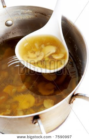 Fungoid Soup