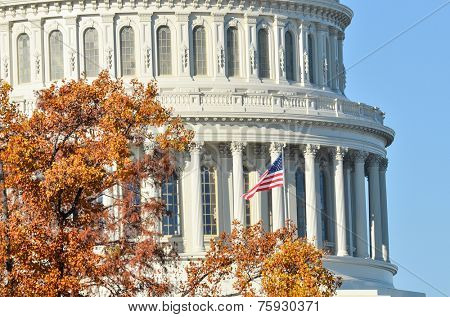 Capitol Building dome detail in Autumn - Washington D.C. United States of America