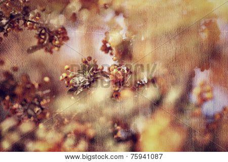 Vintage tree background, rowan berry fruit, beautiful grunge style photo, beauty of autumn nature, selective focus