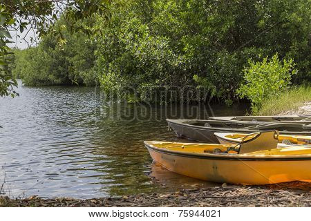 Kayaks In Everglades National Park, Florida, Usa