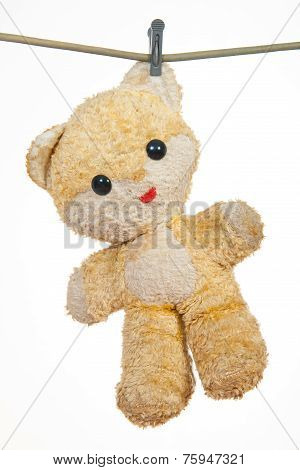 Teddy Bear Hanging To Dry On A String