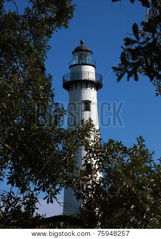 Lighthouse through the Live Oak Branches