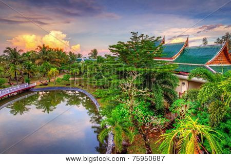 Tropical scenery of palm trees reflected in pond at sunset, Thailand