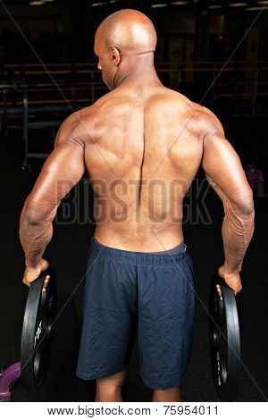 Muscular Back