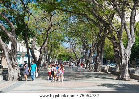 HAVANA,CUBA - NOVEMBER 6,2014 : People at the famous street of Paseo del Prado in Old Havana