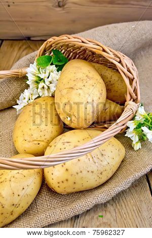 Potatoes yellow in basket with flower on sackcloth and board