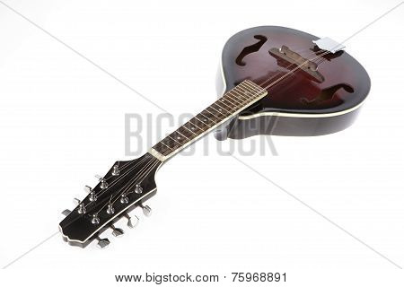 Mandolin On White