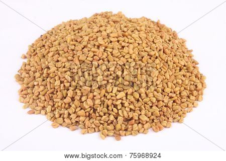 Pile of organic fenugreek.