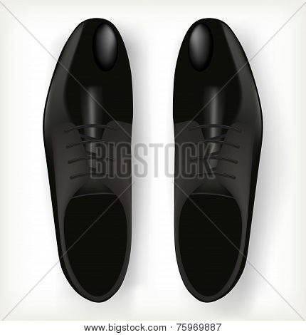 Pair of men's shoes in classic style.