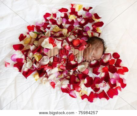 Black Newborn Baby In Red Heart.