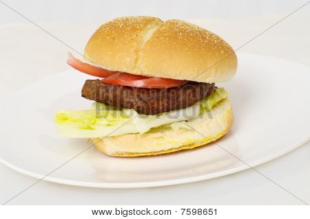 Delicious Fast Food Burger