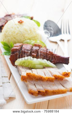 Chinese roasted pork belly served with soy and seafood sauce. Malaysian cuisine. Fresh cooked with hot steam and smoke.