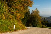picture of curvy  - Curvy road going down the mountain with autumn trees - JPG