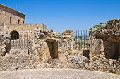 picture of swabian  - Swabian Castle of Rocca Imperiale - JPG