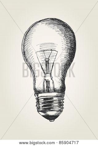 Bulb Sketch