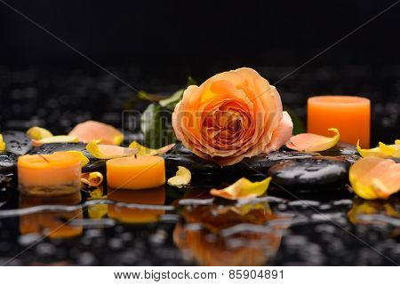 Orange rose with petals with candle and therapy stones