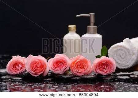 Lying down row of rose with massage oil ,towel with therapy stones