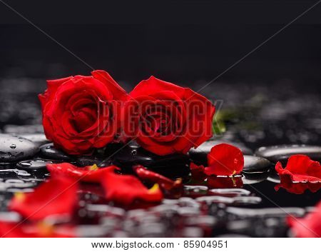 Set of two red rose,petals with therapy stones