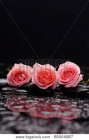 Set of three pink rose with therapy stones