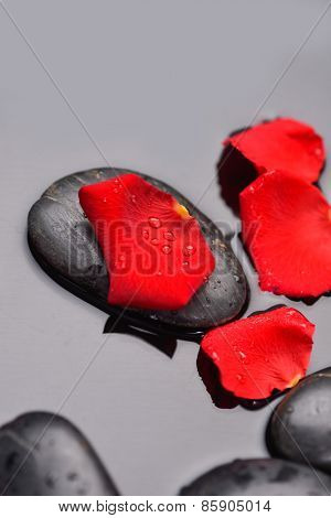 Set of red petals with therapy stones