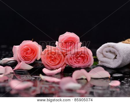 Pink four rose and towel with therapy stones